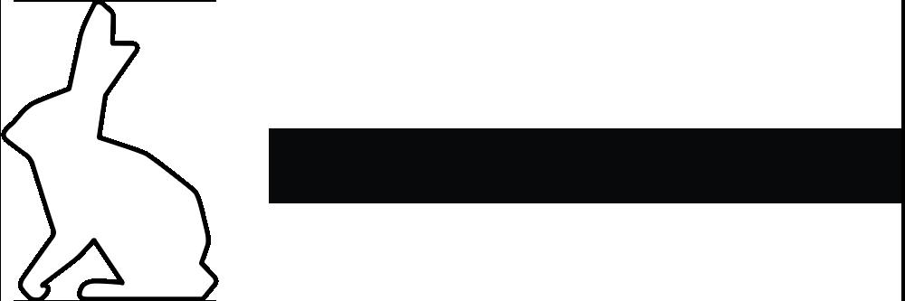 haasonline-logo-light
